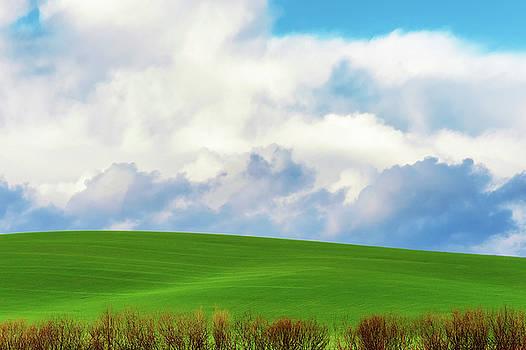 Minimalist Landscape II by Dee Browning