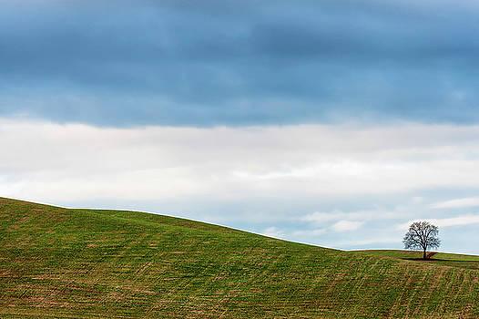 Minimalist Landscape III by Dee Browning