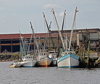 Miss Nichole's Shrimping Company by Linda Brown