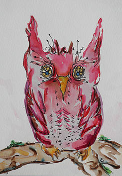Miss. Pink Owl by Carrie  Godwin