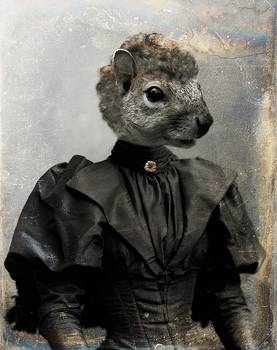 Miss Squirrel by Gothicrow Images