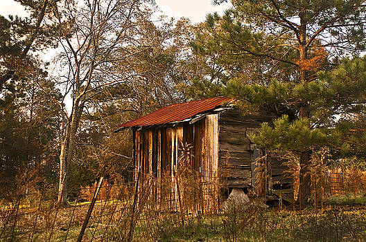 Tamyra Ayles - Mississippi Corn Crib