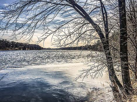 Mississippi River at Little Falls by Tom Gort