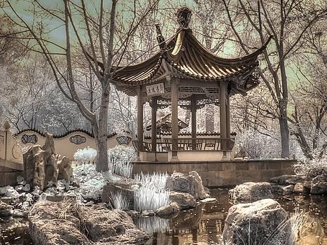Missouri Botanical Chinese Friendship Garden by Jane Linders