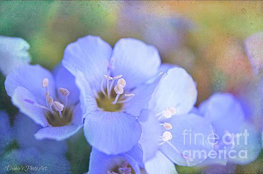 Missouri Wildflowers 5  - Polemonium reptans -  Digital Paint 5 by Debbie Portwood