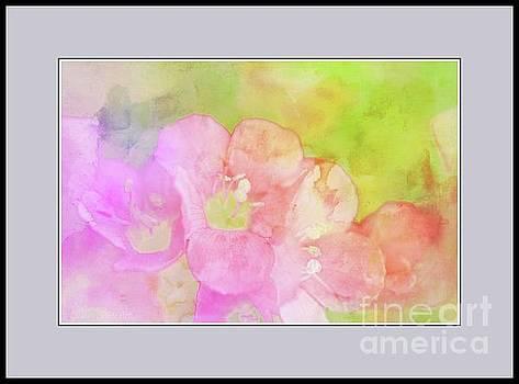 Missouri Wildflowers 5  - Polemonium reptans -  Digital Paint 8 by Debbie Portwood