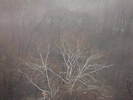 Lynda Lehmann - Mist Over the Hudson