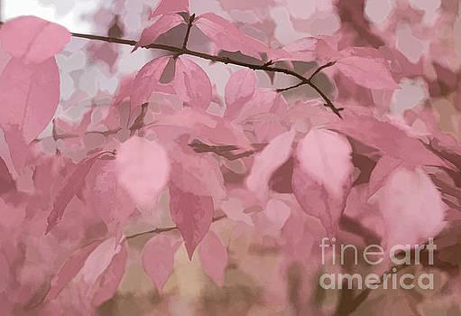 Misty Autumn Leaves by Judy Palkimas