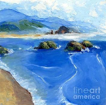Misty Bodega Bay by Randy Sprout