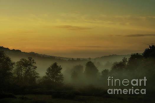 Misty Dawn by Thomas R Fletcher