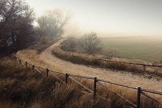 Misty day by Tony Goran