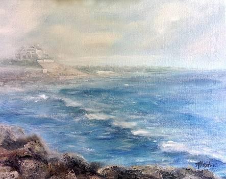 Misty East Beach by Anne Barberi