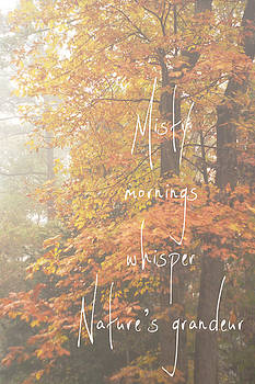 Misty Grandeur Forest Fall Quote by Suzanne Powers