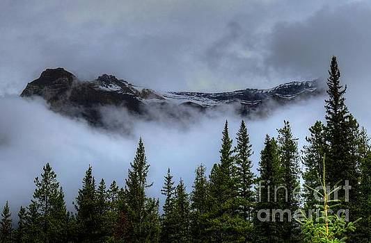 Misty Morning Jasper National Park by Wayne Moran