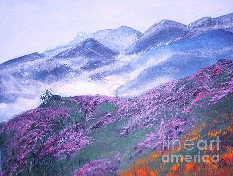 Misty Mountain Hop by Donna Dixon