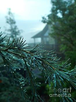 Misty Mountain Morning by Carol McGunagle