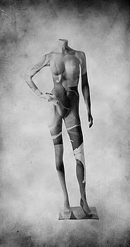 Stefan Kuhn - Model T