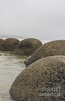 Patricia Hofmeester - Moeraki boulders