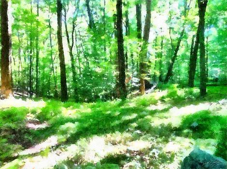 Mohegan Lake Forever Green by Derek Gedney