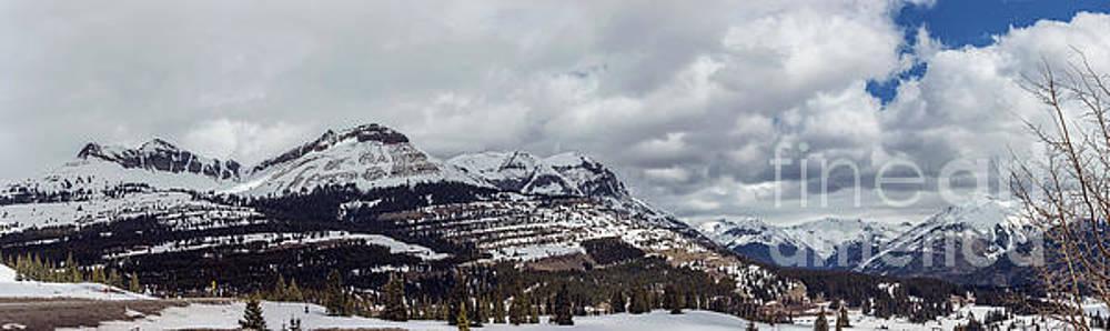 Molas Pass Summit by Joan McCool