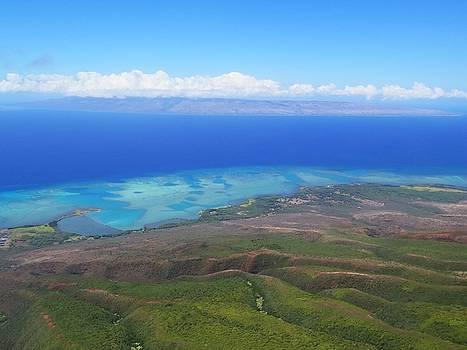 Molokai Island Reef in Hawaii by Stacia Blase