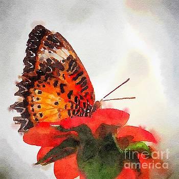 Monarch 1 watercolor  by Rrrose Pix