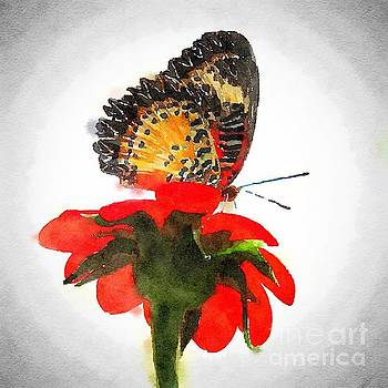 Monarch 2 watercolor by Rrrose Pix