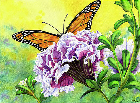 Monarch by Catherine G McElroy