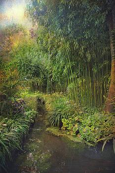 Monets Paradise by John Rivera