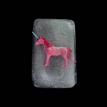 Mono Pink by Beth Achenbach