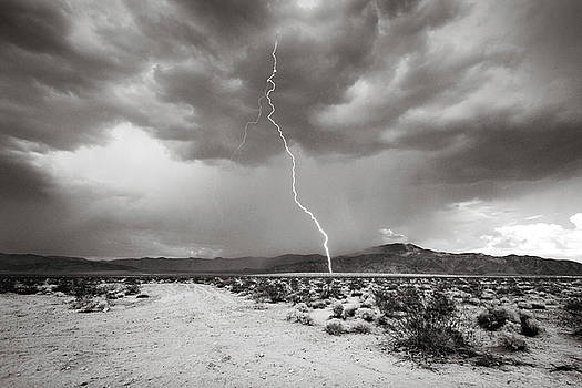 Monochrome Lightning by Jackie Novak