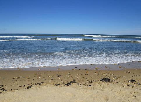 Nina Bradica - Montauk Point Beach-1