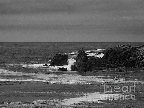 Monterey Bay 6 by Chris Berry