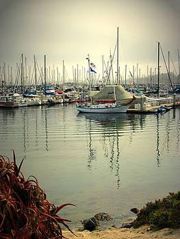 Joyce Dickens - Monterey Marina II