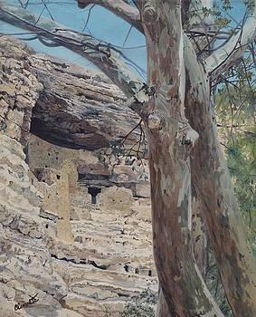 Montezuma's Castle by Barbara Barber