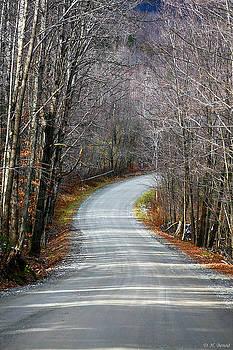 Deborah Benoit - Montgomery Mountain Road