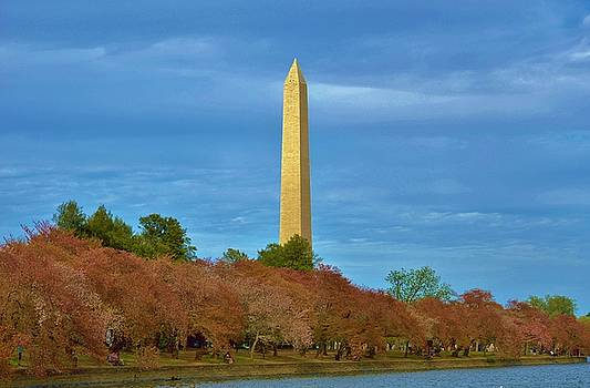 Monument Blossoms by William Bartholomew