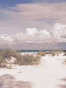 Anna Maria Island Moods of June by Jean Marie Maggi