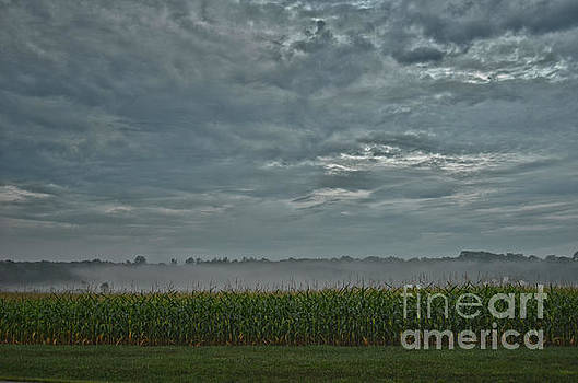 Moody Morning by Lila Fisher-Wenzel