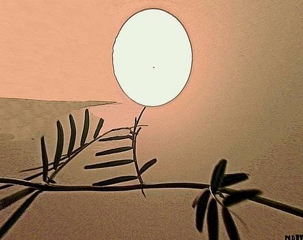 Moon Mind by Nereida Slesarchik Cedeno Wilcoxon