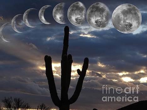 Moon Over Arizona  by Deniece Platt