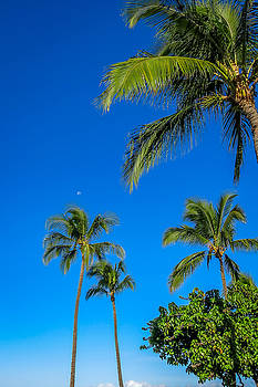 Moon Over Maui by Jim Nelson