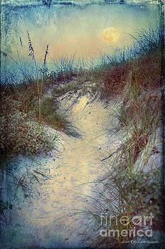 Moon Pine Street by Linda Olsen