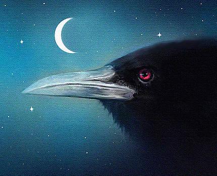 Moon Raven by Robert Foster