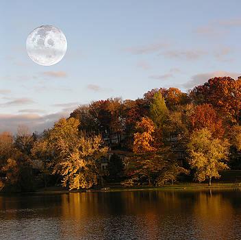 Moon rising by Dennis Bivens