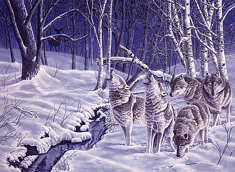 Moonlight Chase - Grey Wolves by Craig Carlson