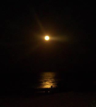 Patricia Taylor - Moonlight Magic