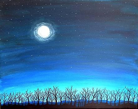 Moonlight on a Forest by Sabrina Zbasnik