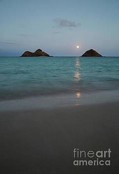 Moonrise at Lanikai by Charmian Vistaunet