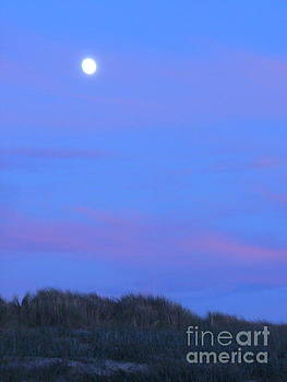 Moonrise at Ocean Beach 1 by Lori Ziemba